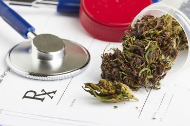 Is Marijuana Good or Bad For The Kidneys?