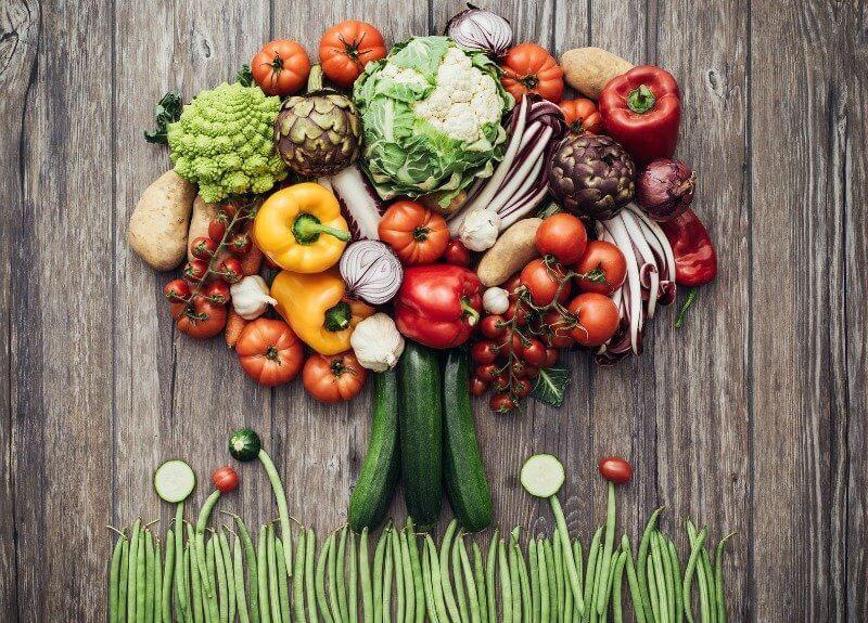 vegetarian diet kidney disease