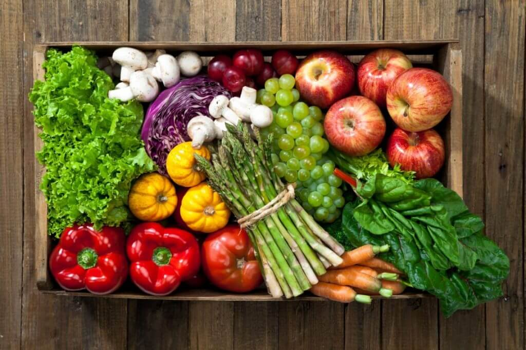 vegetarian kidney transplant diet