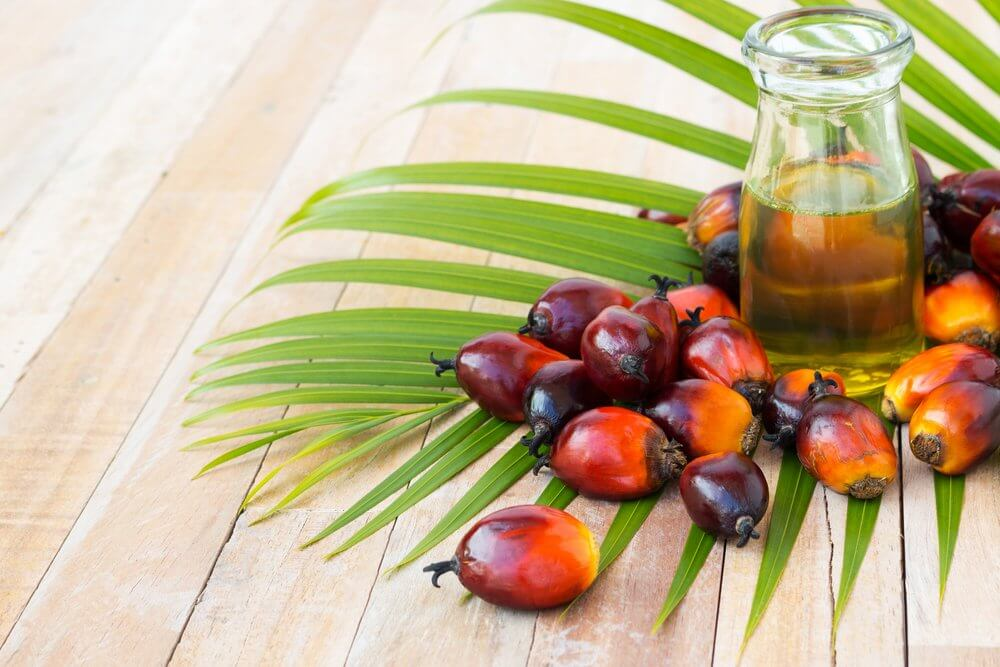Tocotrienol AKA Palm Oil Could Stop Diabetic Kidney Disease From Killing You