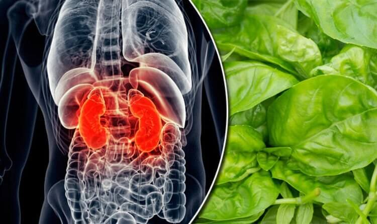 This 'Healthy' Oxalate-Packed Food Could Lead To Kidney Failure If You're Not Careful