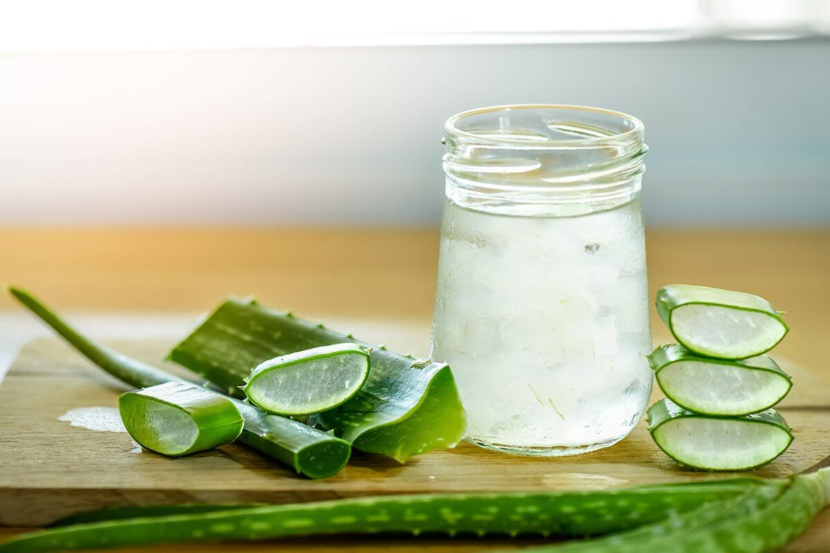 Diabetic Kidney Disease Could Be Prevented With Aloe Vera According To Study