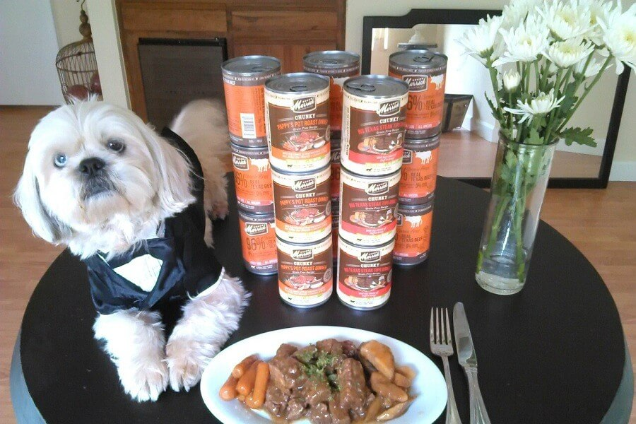 Too Much Protein In Pet Foods Could Be Furthering Kidney Damage In Dogs With CKD