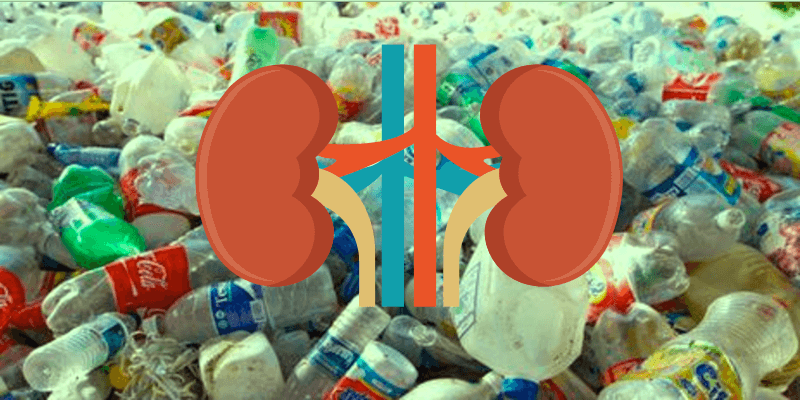 Toxic Exposure to Plastic Components BPA and Phthalate Could Damage Children's Kidneys